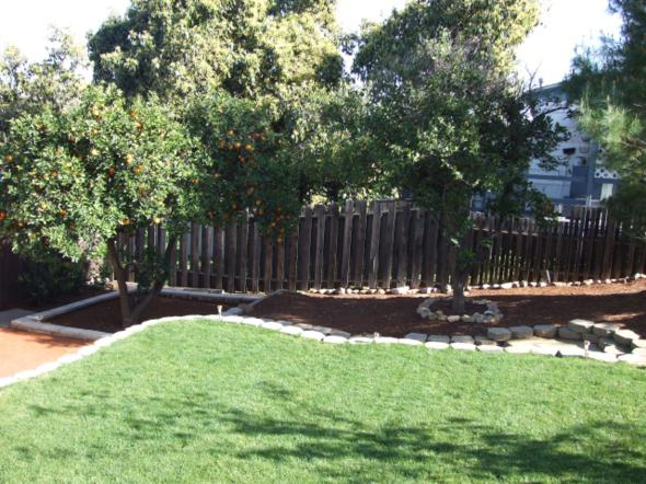 front_yard_before_and_after (8)
